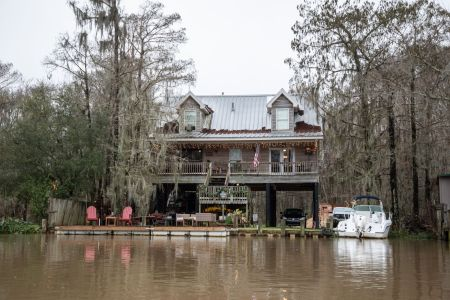 Swamp tour near New Orleans