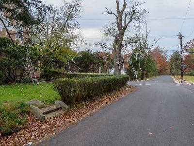 Remnants of halloween