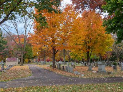 Doylestown Cemetery