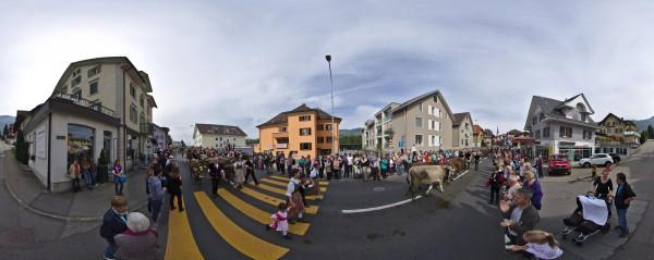 Alpabfahrt in Schüpfheim, Switzerland